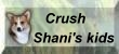Crush - Shani's kids